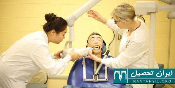 سرفصل دوره آموزش دستیاری دندانپزشکی