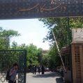 دانشگاه هنر تهران
