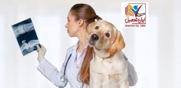 دکتری حرفه ای دامپزشکی بدون کنکور