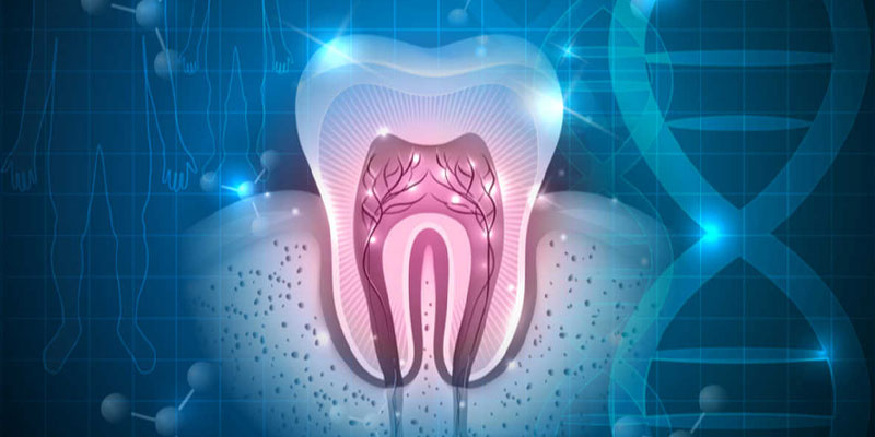 رشته دندانپزشکی بدون کنکور