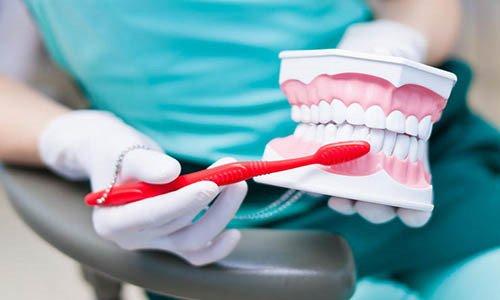 رشته پروتز دندان در کدام دانشگاه ها است