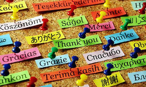 برنامه ریزی روزانه کنکور زبان