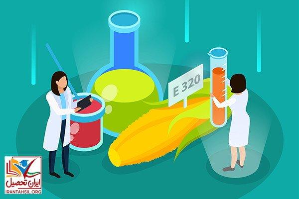 بازار کار رشته علوم تغذیه