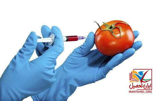 درآمد رشته علوم تغذیه چگونه است؟